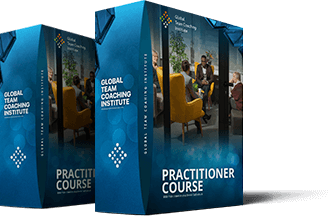 World Business & Executive Coach Summit - gtci ty box-practitioner